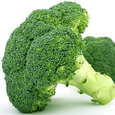 Broccoli telen: onze tips